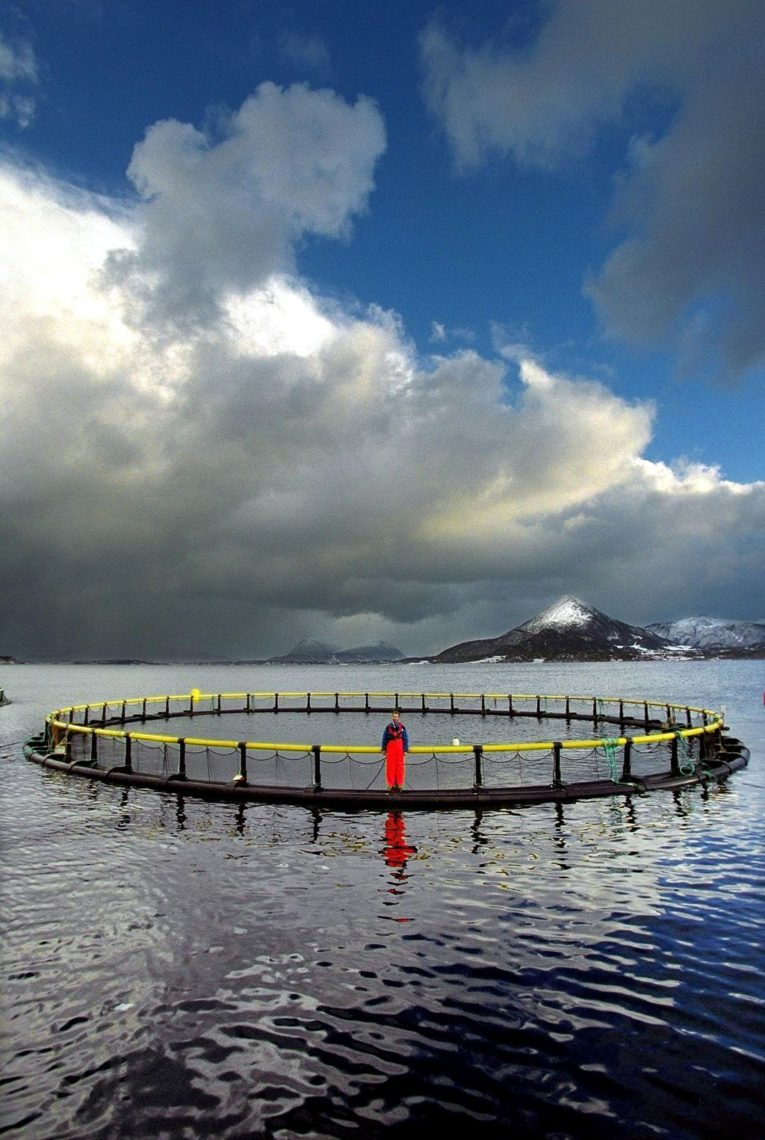 Lakseoppdrett Norge