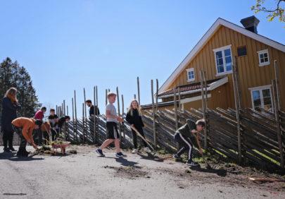 Skolehage Foto Eva Birgitte Hollander